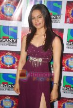 Shikha Singh on the sets of Comedy Circus in Mohan Studios on 14th March 2011 (3).JPG