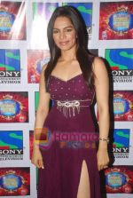 Shikha Singh on the sets of Comedy Circus in Mohan Studios on 14th March 2011 (32).JPG