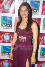 Shikha Singh on the sets of Comedy Circus in Mohan Studios on 14th March 2011 (4).JPG