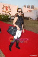 at Jindal Polo match in Mahalaxmi Race Course on 25th March 2011 (70).JPG