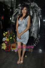 Mrinalini Sharma at Gehna Jewellery 25th anniversary bash in Gehna, Bandra, Mumbai on 9th April 2011 (6).JPG