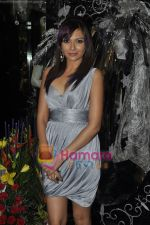 Mrinalini Sharma at Gehna Jewellery 25th anniversary bash in Gehna, Bandra, Mumbai on 9th April 2011 (7).JPG