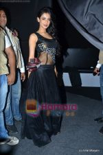 Sonal Chauhan at Wills Lifestyle India Fashion Week 2011-Day 4 in Delhi on 9th April 2011 (5).JPG