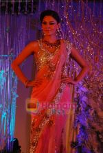at Shane-Falguni show at Shehnaai 2011 in J W marriott, Juhu, Mumbai on 9th April 2011 (65).JPG