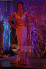 at Shane-Falguni show at Shehnaai 2011 in J W marriott, Juhu, Mumbai on 9th April 2011 (66).JPG