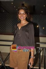 Shweta Kawatra at Gold Awards pre bash in Sea Princess on 16th May 2011 (2).JPG