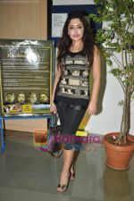 Tareena Patel at Kashmakash special screening in Whistling woods on 18th May 2011 (121).JPG