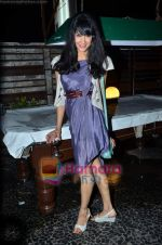 at Nandini Jumani_s birthday bash in Marimba Lounge on 2nd June 2011 (215).JPG