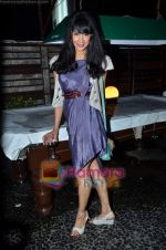 at Nandini Jumani_s birthday bash in Marimba Lounge on 2nd June 2011 (216).JPG
