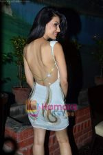 at Nandini Jumani_s birthday bash in Marimba Lounge on 2nd June 2011 (217).JPG