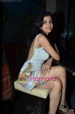 at Nandini Jumani_s birthday bash in Marimba Lounge on 2nd June 2011 (228).JPG
