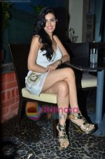 at Nandini Jumani_s birthday bash in Marimba Lounge on 2nd June 2011 (229).JPG