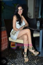 at Nandini Jumani_s birthday bash in Marimba Lounge on 2nd June 2011 (230).JPG