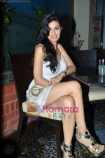 at Nandini Jumani_s birthday bash in Marimba Lounge on 2nd June 2011 (232).JPG