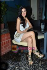 at Nandini Jumani_s birthday bash in Marimba Lounge on 2nd June 2011 (233).JPG