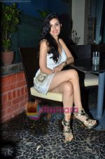 at Nandini Jumani_s birthday bash in Marimba Lounge on 2nd June 2011 (235).JPG