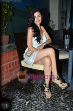 at Nandini Jumani_s birthday bash in Marimba Lounge on 2nd June 2011 (236).JPG