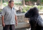 Kevin James in the still from the movie Zookeeper (34).jpg