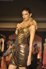 at Blenders Pride Magical NItes fashion show in Points Sheraton, Vashi, Mumbai on 9th July 2011 (77).JPG