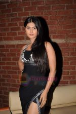 Divya Dwivedi at Milta Hai Chance by Chance music launch in Marimba Lounge on 15th July 2011 (55).JPG