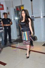 Lucky Morani at Ra One Completion bash in Esco Bar on 31st July 2011 (38).JPG