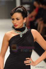 Model walks the ramp for Amrapali at IIJW 2011 in Grand Hyatt on 31st July 2011 (132).JPG