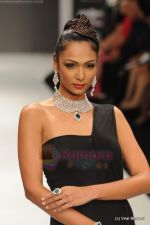 Model walks the ramp for Amrapali at IIJW 2011 in Grand Hyatt on 31st July 2011 (137).JPG