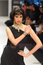 Model walks the ramp for Amrapali at IIJW 2011 in Grand Hyatt on 31st July 2011 (86).JPG