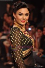 Model walks the ramp for C Krishniah Chetty & Sons at IIJW 2011 in Grand Hyatt on 31st July 2011 (103).JPG