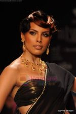 Model walks the ramp for CVM exports show at IIJW 2011 Day 2 in Grand Hyatt on 1st Aug 2011 (19).JPG