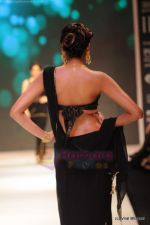 Model walks the ramp for CVM exports show at IIJW 2011 Day 2 in Grand Hyatt on 1st Aug 2011 (26).JPG