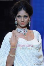 Model walks the ramp for Kays Jewels show at IIJW 2011 Day 2 in Grand Hyatt on 1st Aug 2011 (53).JPG