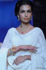 Model walks the ramp for Kays Jewels show at IIJW 2011 Day 2 in Grand Hyatt on 1st Aug 2011 (55).JPG