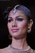 Model walks the ramp for Scintillating Jewellery show at IIJW 2011 Day 2 in Grand Hyatt on 1st Aug 2011 (67).JPG