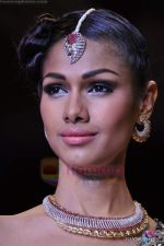 Model walks the ramp for Scintillating Jewellery show at IIJW 2011 Day 2 in Grand Hyatt on 1st Aug 2011 (68).JPG