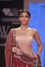 Model walks the ramp for Scintillating Jewellery show at IIJW 2011 Day 2 in Grand Hyatt on 1st Aug 2011 (75).JPG