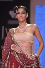 Model walks the ramp for Scintillating Jewellery show at IIJW 2011 Day 2 in Grand Hyatt on 1st Aug 2011 (76).JPG