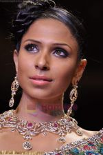 Model walks the ramp for Scintillating Jewellery show at IIJW 2011 Day 2 in Grand Hyatt on 1st Aug 2011 (80).JPG