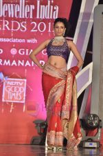 Model walks the ramp for Saree designer Shruti Sancheti showcase at 7TH Retail Jeweller Awards in Lalit Hotel on 6th Aug 2011 (38).JPG