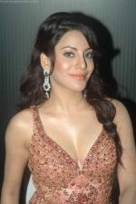Priti Soni at Ur My jaan music launch in Juhu, Mumbai on 25th Aug 2011 (55).JPG