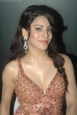 Priti Soni at Ur My jaan music launch in Juhu, Mumbai on 25th Aug 2011 (56).JPG