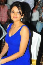 Anusha Jain at Duniya Movie Audio Launch on 27th August 2011 (2).jpg