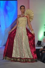 Shamita Singha at WLC Chimera fashion show in Leela Hotel on 8th Sept 2011 (398).JPG