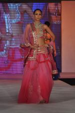 Shamita Singha at WLC Chimera fashion show in Leela Hotel on 8th Sept 2011 (404).JPG