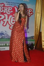at Tere Mere Phere music launch in Raheja Classique, Andheri on 16th Sept 2011 (71).JPG
