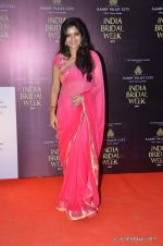 at Bhairavi Jaikishen Show at Amby Valley India Bridal Week day 2 on 24th Sept 2011 (45).JPG