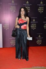 at Bhairavi Jaikishen Show at Amby Valley India Bridal Week day 2 on 24th Sept 2011 (53).JPG