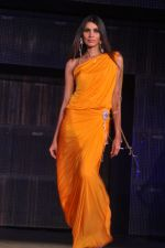 at Blenders Pride Fashion Tour 2011 Day 2 on 24th Sept 2011 (117).jpg