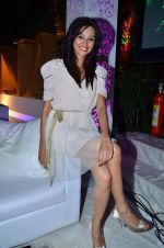 on Day 4 at Amby Valley India Bridal Week on 26th Sept 2011-1 (153).JPG