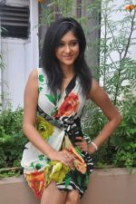 Sarika Affan Casual Shoot during Cricket Girls and Beer Press Meet on 26th September 2011 (41).jpg